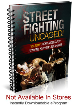 streetfightingbook