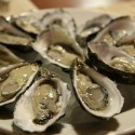 Why Your Body Needs Zinc